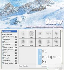 10_snow_brushes_1290367191.jpg (17.83 Kb)