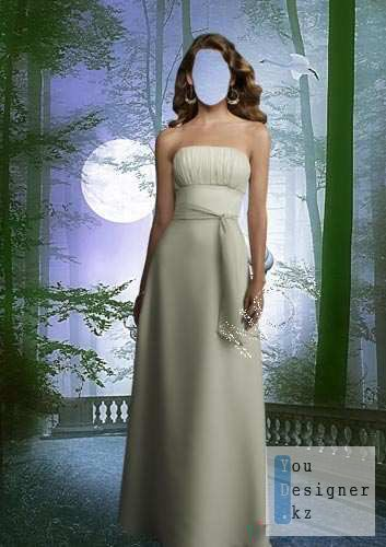Шаблон для фотомонтажа - В лунном свете / Template for photomontage - In moonlight