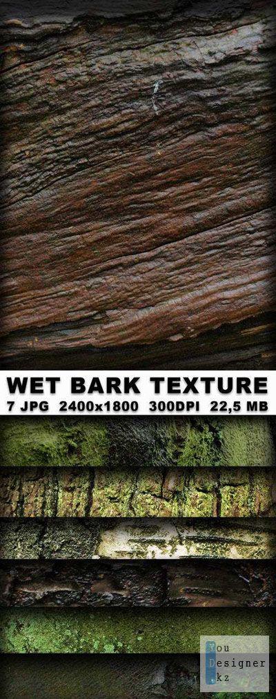1288721543_wetbarktexture500.jpg (123.92 Kb)
