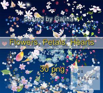 Клипарт PNG Россыпь: цветы, лепестки, сердечки / PNG clipart: flowers, petals, hearts