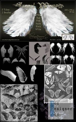 angelic_wings_1302722037.jpg (40.66 Kb)