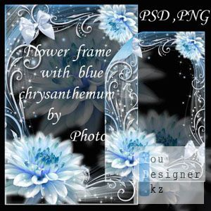 blue_chrysanthemum.jpg (29.31 Kb)