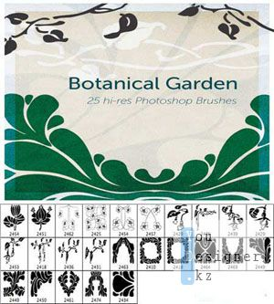 Botanic garden brushes