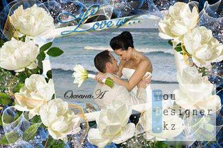 Photo frame - a Charming white rose