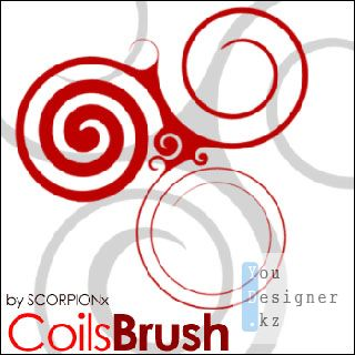 coils_brush_1028_1201205638.jpg (24.12 Kb)