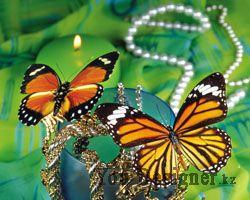 Фон бабочки цветы