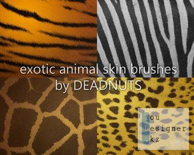 exotic_animal_skins_brushes_1299454072.jpeg (30.75 Kb)