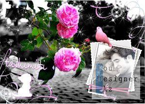 frame_photo_floral75_cvetochnaya_ramka.jpg (23.79 Kb)