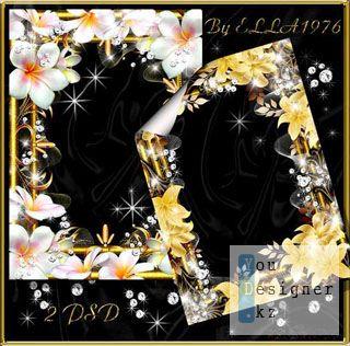 gold_frames_parte2_1311013958.jpg (33.92 Kb)