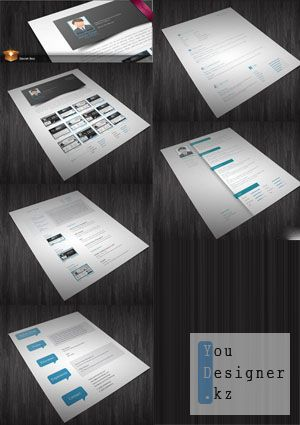 Шаблон резюме / 5 CV/Resumes InDesign Templates