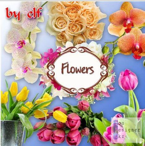 Клипарты - Букеты цветов
