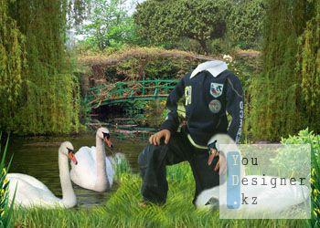 Детский шаблон для фотомонтажа - Лебеди / Children's template for the photomontage - Swans