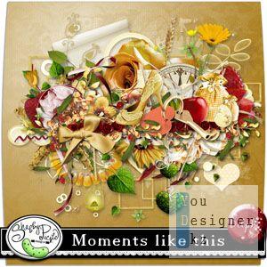 moments_like_this.jpg (30.71 Kb)