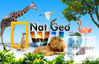 nat_geo_wild_tutorial_1318526327.jpeg (22.95 Kb)