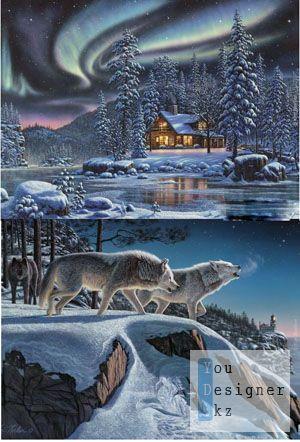 Дикая природа в работах художника Kim Norlien.