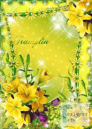 original_naya_s_liliyami_13068866.jpg (46.52 Kb)