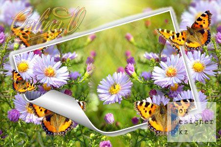 photoframe__high_spirit_kopiya.jpg (43.38 Kb)