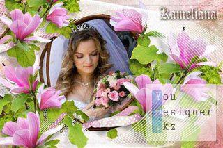 pink_magnolia_1306183512.jpg (24.09 Kb)