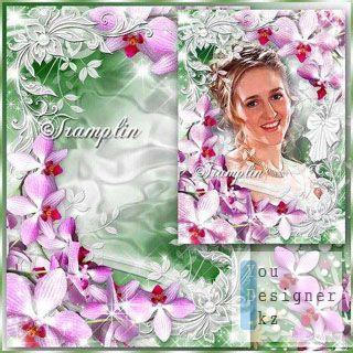 pink_orhi2708_13143504.jpg (37.39 Kb)