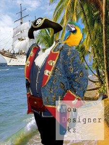 pirat_2.jpg (22.67 Kb)
