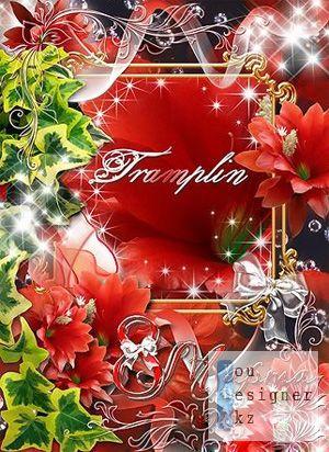 Рамка с цветами - Желаю в день 8 марта - Здоровья, счастья, красоты