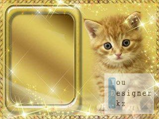 Рамка для фото – Рыжий котенок / Photo frame - Red - haired kitten