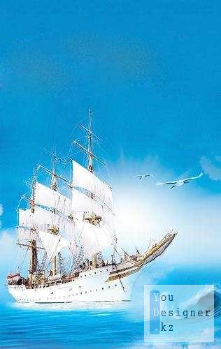 sailfish_1320943767.jpg (25.55 Kb)