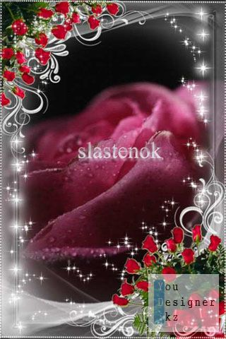 silver_and_roses_by_slastenok_1318450327.jpg (38.05 Kb)