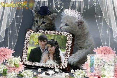 Свадебная фоторамка - Котята молодожены