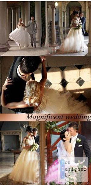 Stock Photo: Magnificent wedding