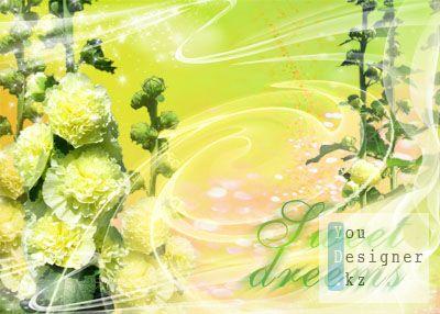 sweet_dreams_3_copy.jpg (28.23 Kb)