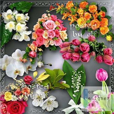 Beautiful flower clipart