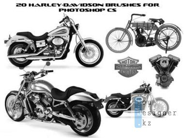 Brushes set - Harley Davidson