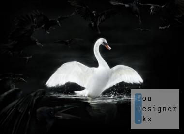 christophe-huet-swan.png (181.08 Kb)