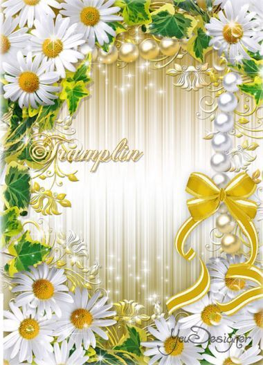 Flower box with a bow - Chamomile you find her, whispering softly Love