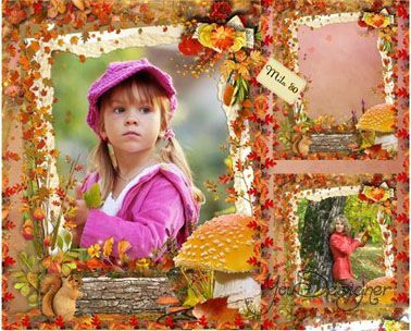 Photo-frame - In an autumn wood