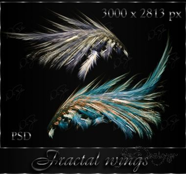 fractal-wings-by-diza.jpg (.84 Kb)