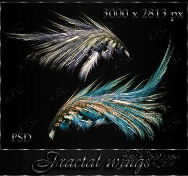 fractal-wings-by-diza.jpg (.84 Kb)