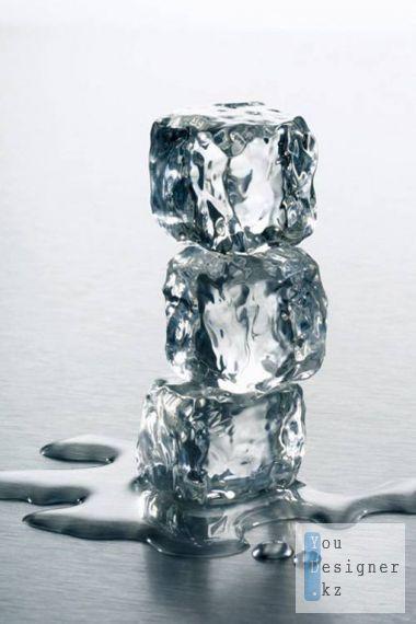 icepsd-1330187706.jpeg (52.38 Kb)