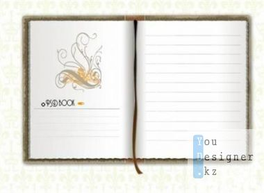 Notebook in the PSD