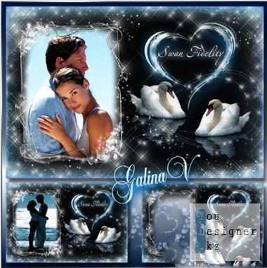Romantic frame for lovers - Swan-fidelity