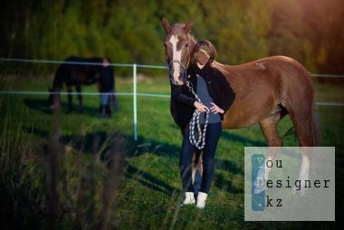 Template for Photoshop - Photo with a horse