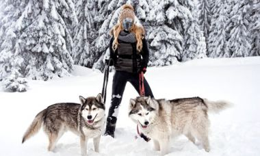 Female template for photomontage - With two husky