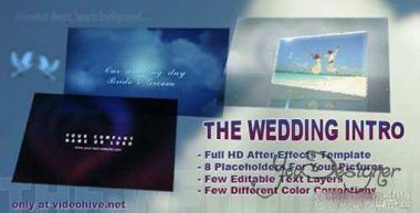 the-wedding-intro-1335383791.jpg (25.21 Kb)