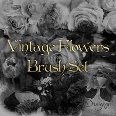 vintage-flowers-brush-set-1370556885.jpeg (61. Kb)