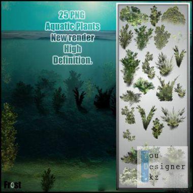 Клипарт - Морские водоросли / Clipart - Seaweed