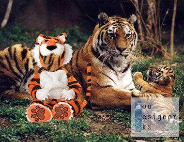 Шаблон для фотомонтажа-Тигрята