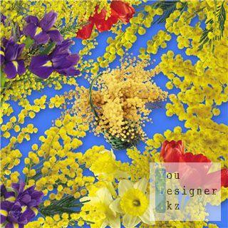 Клипарт – Веточки мимозы / Clipart - Twigs mimosa