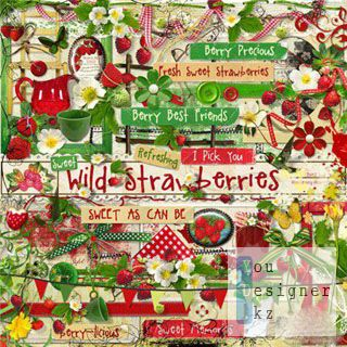 wildstrawberries_1308077472.jpg (45.42 Kb)