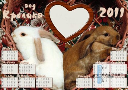 year_the_rabbit__heart_.jpg (36.99 Kb)